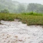 les previsions des pluies dans le sud